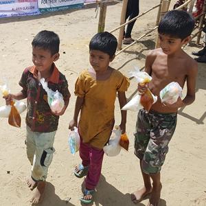 Rohingya Crisis Appeal, Rohingya Appeal