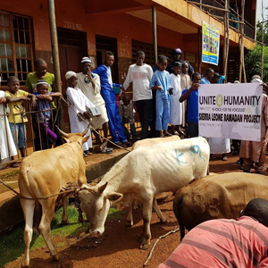 Donate my Qurbani Muslim Charity, Qurbani Donations