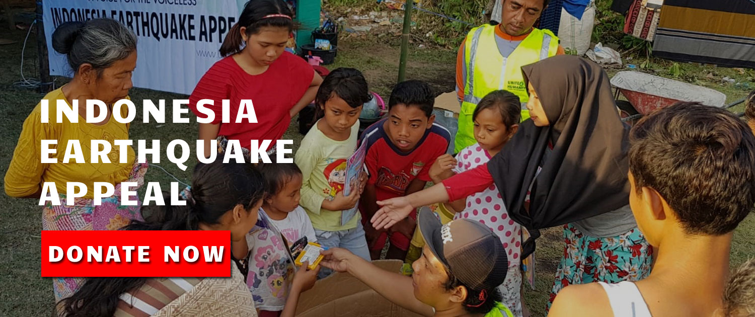 Indonesia Earthquake Appeal