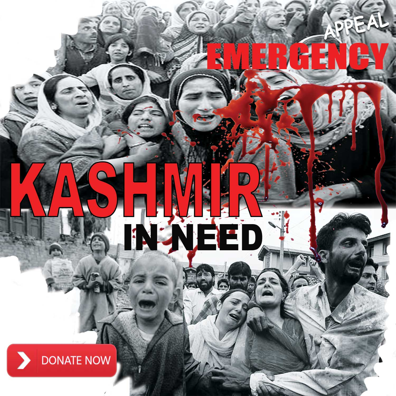 Muslim Charity | 100% Donation Policy | Donate Now & Save